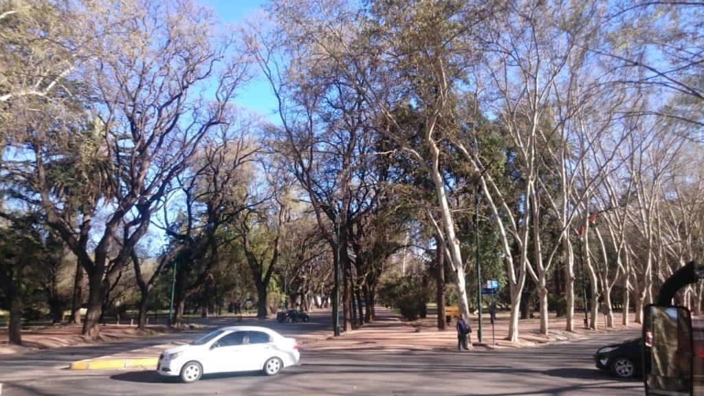Mendoza Ciudad 7